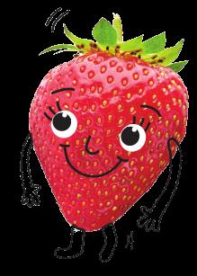Bloc Traubenzucker mit Erdbeer Geschmack